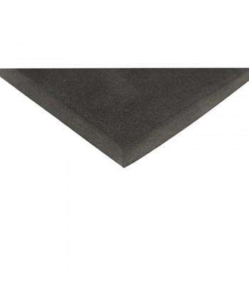 PLASTAZOTE™ 2000x1000x5 mm